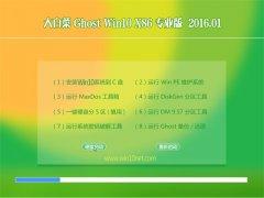 大白菜Ghost Win10 32位 猴年专业机 2016.01