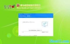新萝卜家园Windows10 大神装机版64位 v2020.03