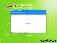 新萝卜家园Ghost Win10x86 安全专业版 v2019年05月(免激活)